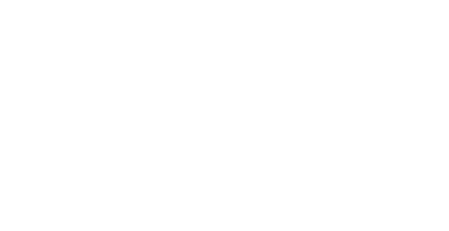 Autohaus Website
